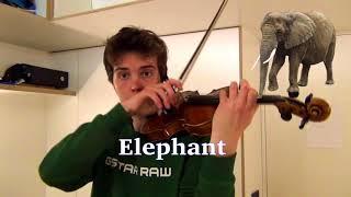 Video Animal sounds on violin MP3, 3GP, MP4, WEBM, AVI, FLV April 2019
