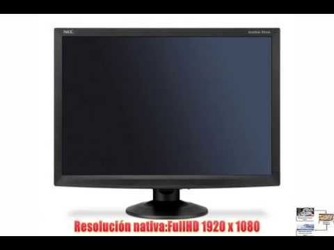 NEC AccuSync AS241W - Monitor (60.96 cm (24) 5 ms 300 cd / m² Negro 100 x 100 mm Poder)
