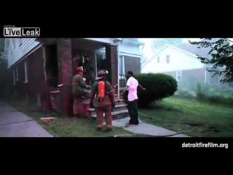 vigile del fuoco salva due cani