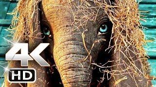 Video DUMBO Trailer 4k (2019) Tim Burton Disney Movie HD MP3, 3GP, MP4, WEBM, AVI, FLV Juni 2018