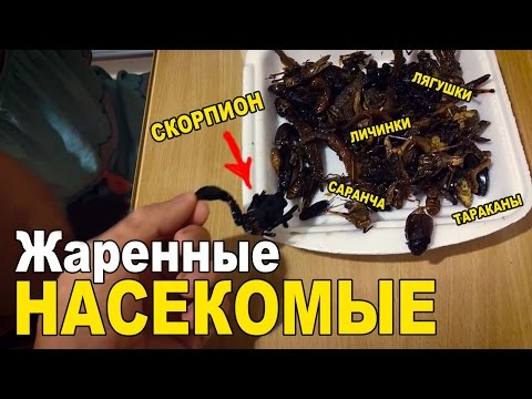 , title : 'Едим насекомых в Тайланде. Скорпион, жуки, личинки, тараканы, многоножки'