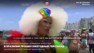 в Бразилии прошел ежегодный гей - парад