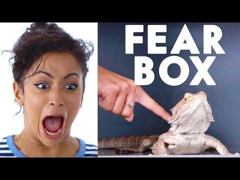 Liza Koshy Touches a Bearded Dragon, Chinchilla & Other Weird Stuff in the Fear Box | Vanity Fair