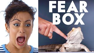 Video Liza Koshy Touches a Bearded Dragon, Chinchilla & Other Weird Stuff in the Fear Box | Vanity Fair MP3, 3GP, MP4, WEBM, AVI, FLV Januari 2018