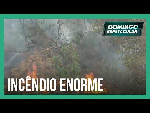Pantanal sofre com o maior incêndio dos últimos 22 anos
