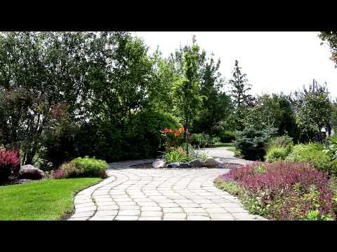 A Walk in The Botanic Gardens