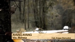 Mahesa - Ayang Ayang (Official Music Video)