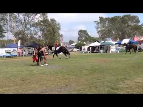 Trick riding and Vaulting NT