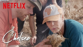 Video Survival School with Fortune Feimster and Dan Maurio | Chelsea | Netflix MP3, 3GP, MP4, WEBM, AVI, FLV Maret 2019