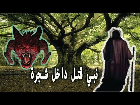 العرب اليوم - نبي قتله قومه بالمنشار داخل شجرة