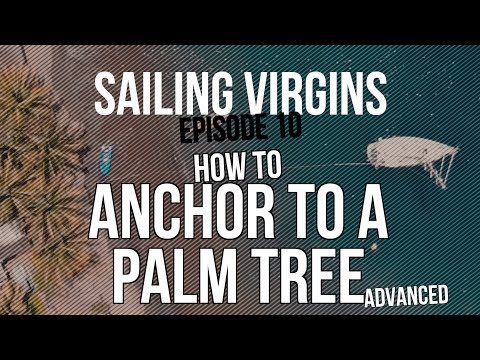 How to Anchor to a Palm Tree (Sailing Virgins) Ep.10