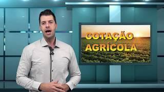 Capa do vídeo Paraná se prepara para requerer suspensão da vacinação