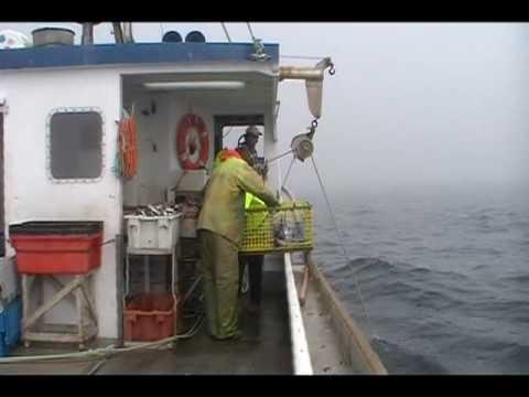 Beausoleil III - LFA34 - Meteghan, NS - Lobster Fishing - May 24, 2010