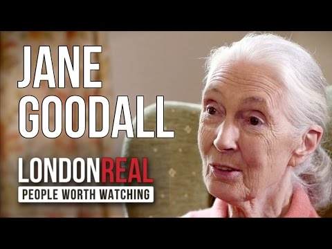 Dr. Jane Goodall - Wild At Heart - PART 1/2 | London Real