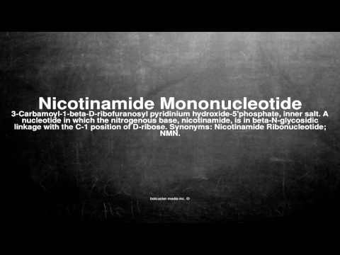 Medical vocabulary: What does Nicotinamide Mononucleotide mean