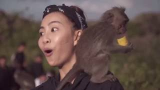 Video TravelSSBD #2 - Monkey trouble for Sonia in Bali! MP3, 3GP, MP4, WEBM, AVI, FLV Agustus 2018