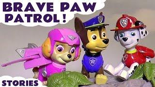 Brave Paw Patrol