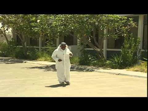 بالفيديو..غراب يحول حياة رجل الى جحيم