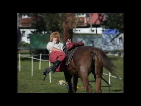 Dżygitówka Mateusz Franczak Trick Riding (stunt horse show)