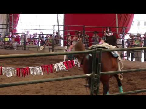Hearts & Hooves Trick Riding, Calgary Stampede 2014