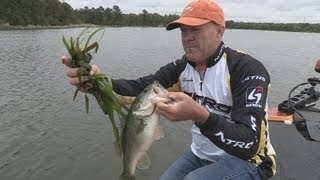 Bastrop (TX) United States  city photos gallery : Southwest Outdoors Report #5 Lake Bastrop, Texas Bass Fishing - 2013