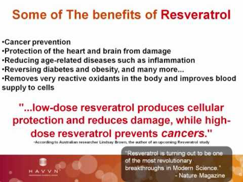 Disease Prevention Life Extension Wealth Creation Part Three.wmv