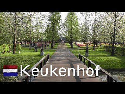 garden video - April 23, 2011 - 'Keukenhof' in the Netherlands, also known as the Garden of Europe, is the world's largest flower garden for over 50 years. It is filled wit...