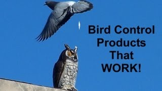 Bird Control Products @ Nixalite.com - YouTube