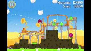 Angry Birds Seasons Summer Pignic Level 1 Walkthrough 3 Star