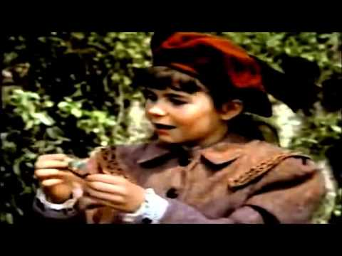Watch The Secret Garden Online - 1993 Movie - Yidio