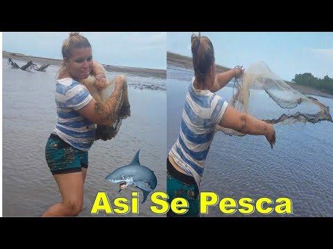 Videos caseros - -¡ASI SE PESCA!! Hermosa Salvadoreña Agarrando La Guabina Con Su Atarraya-