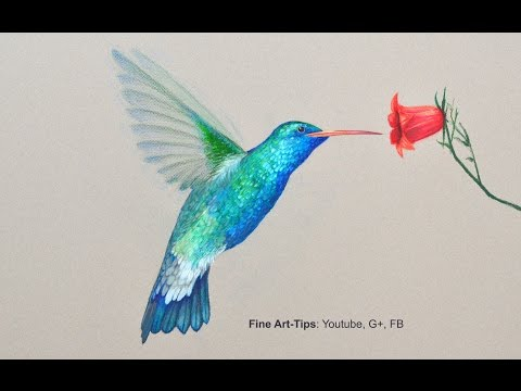 color - Visit me on FB: https://www.facebook.com/LeonardoPereznieto Follow Fine Art Tips on Google+: http://goo.gl/TqsmiJ My website: http://www.ArtistLeonardo.com/ How to Draw a Hummingbird With...