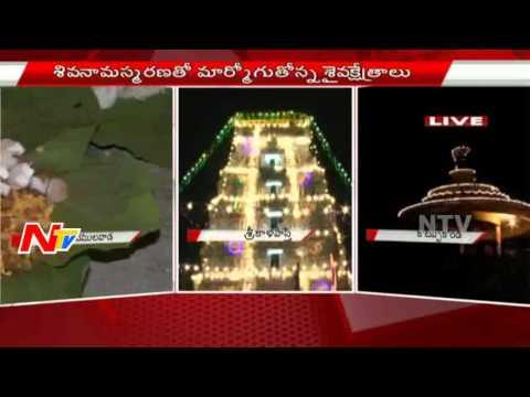 Shivaratri-Celebrations-in-Vemulawada-Jagarana-in-Temple-LIVE-NTV-08-03-2016