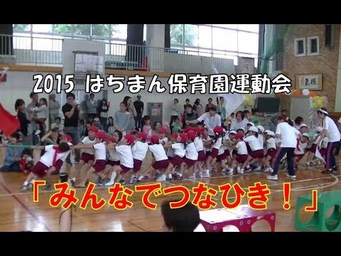2015はちまん保育園(福井市)運動会 人気競技の綱引き!大人チームに勝って大喜びの子どもたち!