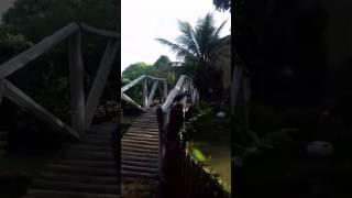 Site solar das palmeiras