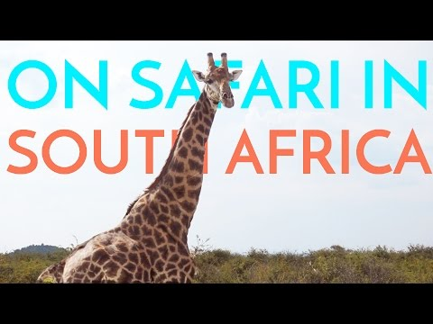 Safari in SOUTH AFRICA! | Fleur De Vlog
