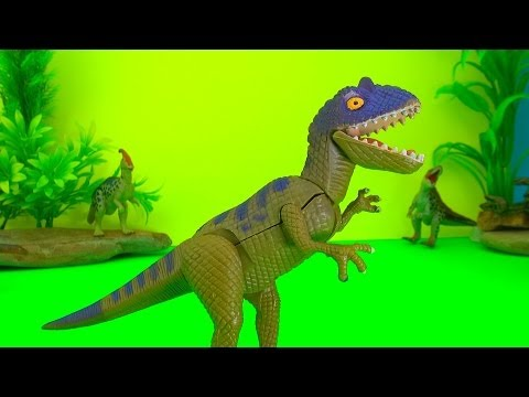 dinosaur - You will see fighting dinosaurs battle with an unexpected fun ending. See the Dinosaurs first and then the action starts as they all get to fight each other....