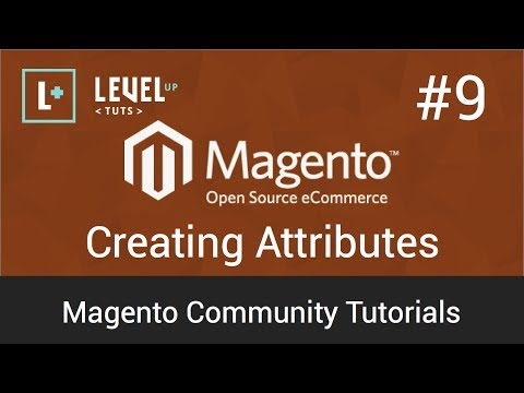 Magento Tutorial 9  Creating Attributes