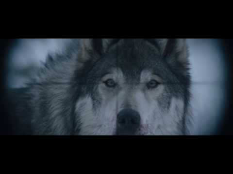 Hold The Dark 2018 (The Wolf Scene)