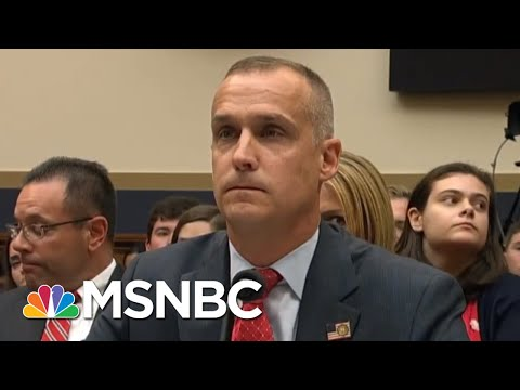 Lewandowski Refuses To Answer Question About Meeting With Trump Detailed In Mueller Report  MSNBC