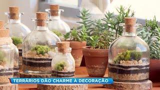 Jardins em miniatura são novas alternativas de decoração