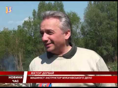 За чисте довкілля. Мукачівці долучилися до всеукраїнської толоки