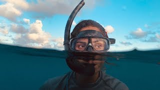 Video Shot on iPhone XS — The Reef, Maldives — Apple MP3, 3GP, MP4, WEBM, AVI, FLV Juli 2019