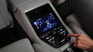Climate Control Rear Panel