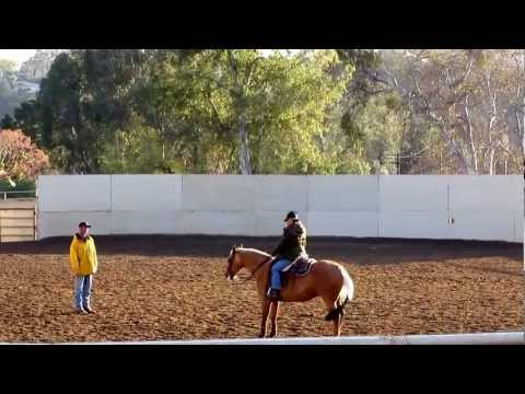 Horse Trainer Orange County California