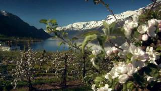 Norway Powered By Nature Hd.mov
