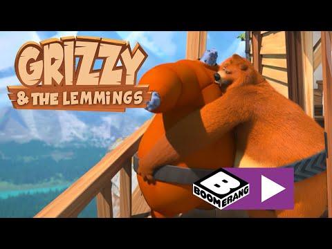 Grizzy şi lemingii | Lemingii sumo | Boomerang