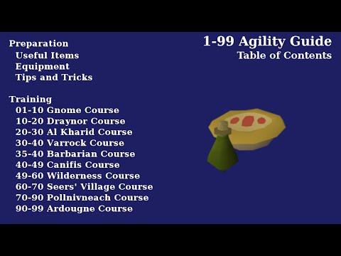 How To Train Agility 1 99