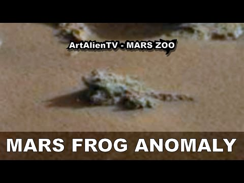 FROG ON MARS: Fossil Anomaly Ignored by CuriosityTeam?  ArtAlienTV – MARS ZOO 1080p