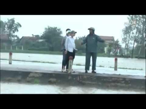 Phú Yên: Mưa lớn gây ngập lụt, học sinh liều mình vượt lũ đến trường - Thời lượng: 0:49